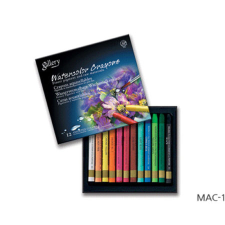 12's Mungyo Water Soluble Oil Pastel Set
